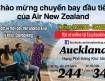 Đường bay thẳng Việt Nam đến New Zealand giá ưu đãi