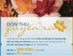 Ưu đãi giá mùa thu vàng quyến rũ 2019 giá vé từ 299k từ hãng Vietnam Airlines